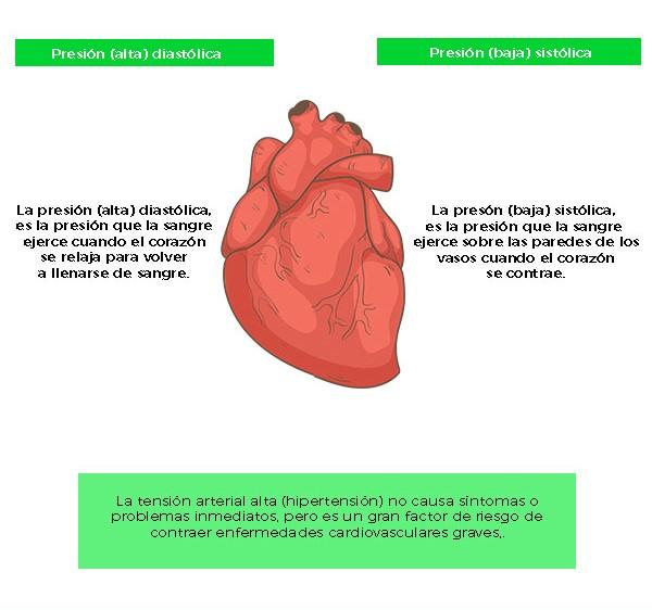 f5555043b70d0 La importancia de controlar tu presión arterial - InfoFamily